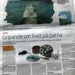 Västra Nyland recension_p